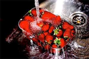 Holiday and Feast in Rome: Strawberries Festival in Rome